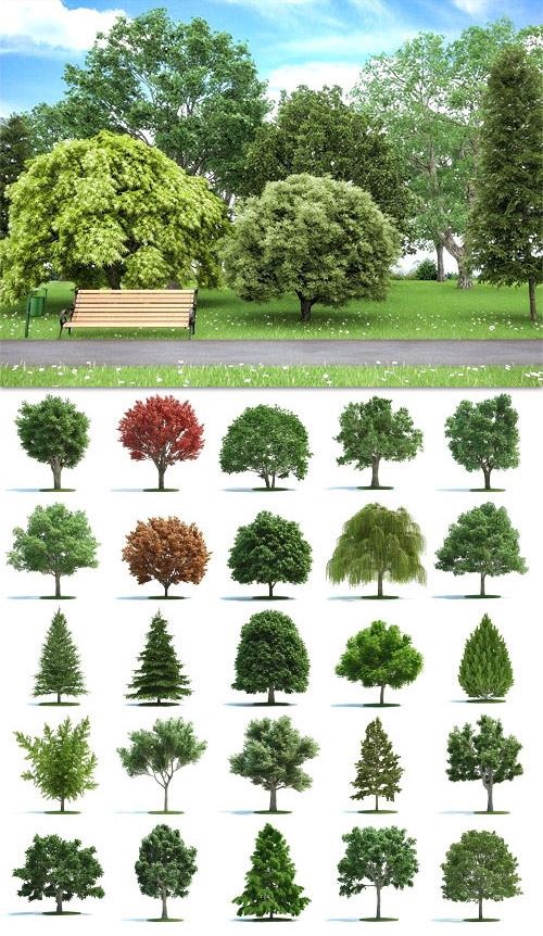 Archmodels Vol.58 - Realistic Trees Models  - Reup