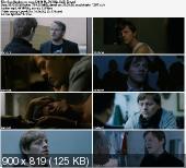 Cała prawda o mężczyznach / Sandheden om mand (2010) PL.DVDRip.XviD-Zet