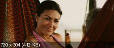 «Весёлые» каникулы / Get the Gringo (2012) HDRip / 1.46 Gb [Лицензия]