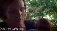 Щит / The Shield (Сезон 6) (2007) DVDRip