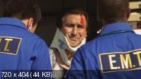 Щит / The Shield (Сезон 3) (2004) DVDRip