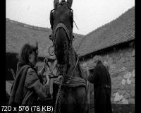 ��������� ������ / The Turin Horse (2011) DVD9 + DVD5 + DVDRip 2100/1400 Mb