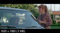 Существо / The Entity (1982) BD Remux + BDRip 720p