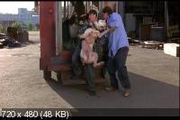 Дорога домой 2: Затерянные в Сан-Франциско / Homeward Bound II: Lost in San Francisco (1996) DVD5 + DVDRip