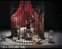 Игла Remix (2010) DVD5 + DVDRip 1400/700 Mb