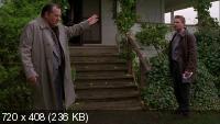 Мастера ужасов: Шкуры / Masters of Horror: Pelts (2006) BDRip 720p + HDRip