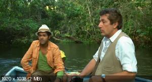 Джунгли зовут! В поисках Марсупилами / Sur la piste du Marsupilami (2012) HD 1080p