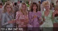 Роми и Мишель на встрече выпускников / Romy and Michele's High School Reunion (1997) BD Remux + BDRip 720p + HDRip
