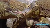 Жизнь отвратительных животных / Nasty by Nature (2010) SATRip