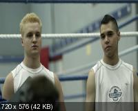 Нокаут / Knockout (2011) DVD9 + DVD5