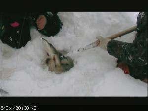 Сибирская рыбалка (2008-2011) DVDRip