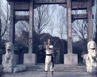 Последний боец Шаолиня / Last Kung Fu Monk (2010) DVD + DVDRip