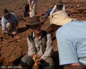 BBC: Первая жизнь / BBC: David Attenborough's First Life (2010) 2xDVD5