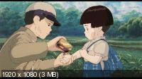 Могила светлячков / Hotaru no haka / Grave of the Fireflies (1988) BD Remux + BDRip 1080p / 720p + BDRip