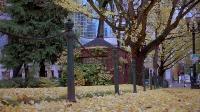 Параноид парк / Paranoid Park (2007) BDRip 720p + HDRip