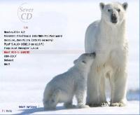 RusLive WIN Micro Edition 2012 (RUS)