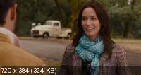 Немножко женаты / The Five-Year Engagement (2012) BluRay + BD Remux + BDRip 1080p / 720p + HDRip 2100/1400/700 Mb