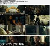 Lady / The Lady (2011) PL.BRRip.XviD-BiDA / Lektor PL