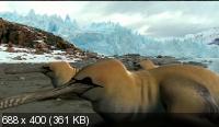 BBC: Прогулки с монстрами будущего / The Future Is Wild (2003) DVDRip