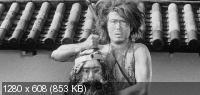 Черные кошки в бамбуковых зарослях / Yabu no naka no kuroneko (Black Cat from the Grove) (1968) BD Remux + BDRip 720p + BDRip